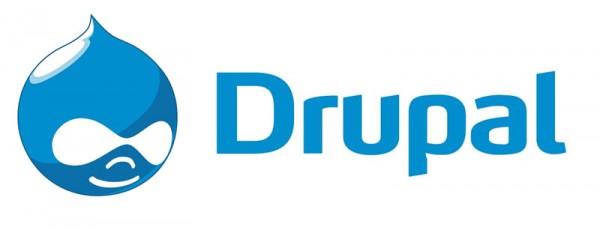Drupal-Development-Raybiztech.jpg