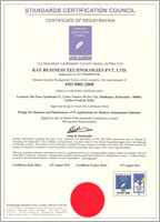 ray business certificate